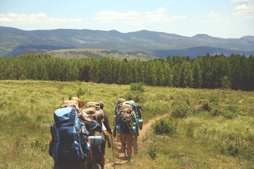 Planning a School Trip for the Spring