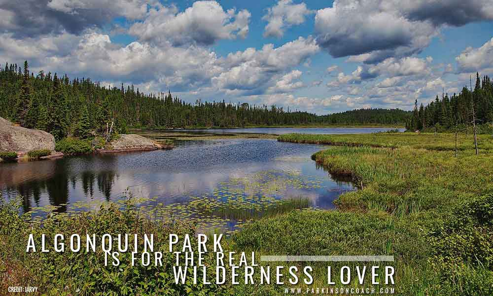 Algonquin Park is for the real wilderness lover