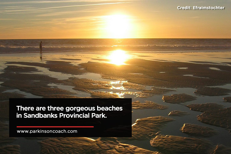 There are three gorgeous beaches in Sandbanks Provincial Park.