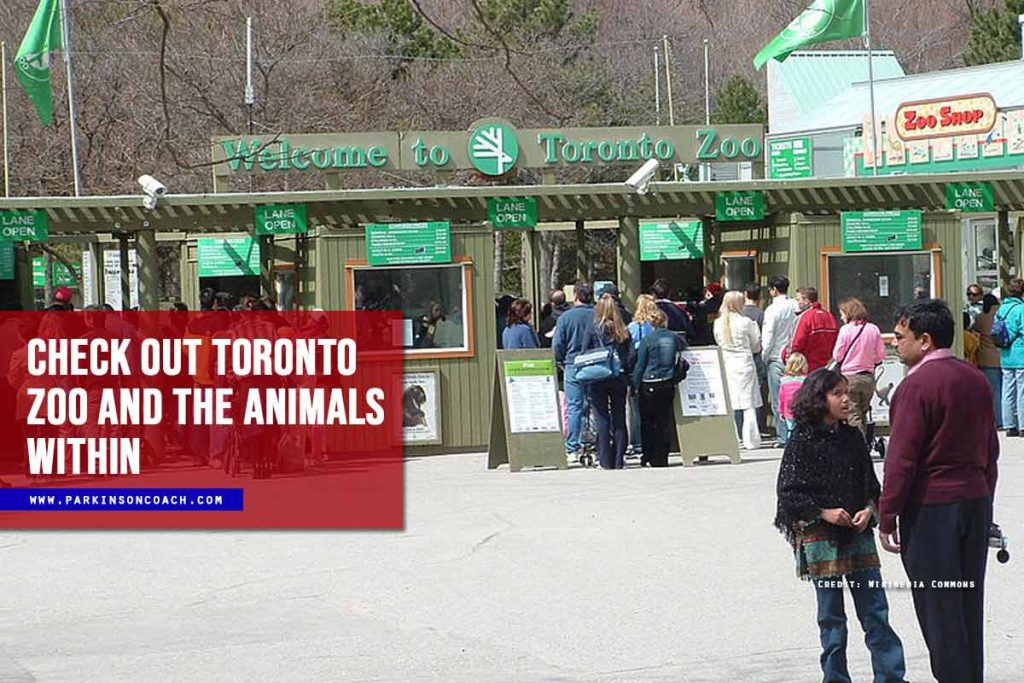 Check out Toronto Zoo and the animals within