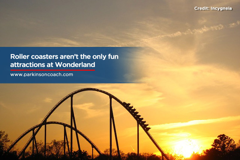 Roller coasters aren't the only fun attractions