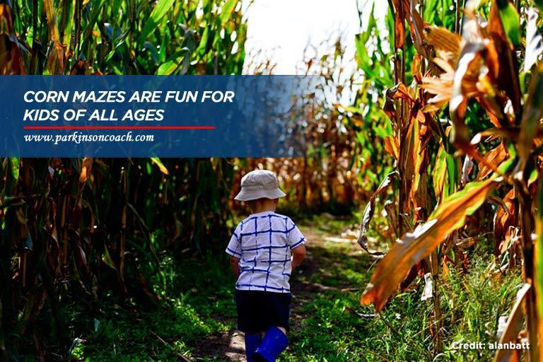 corn mazes are fun