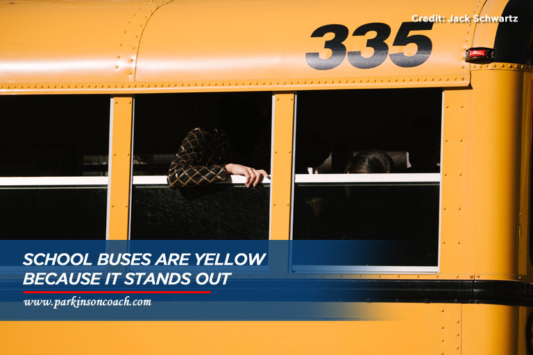 about school buses