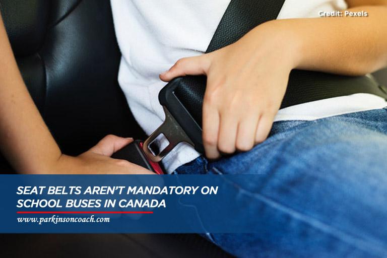 do school bus have seatbelts