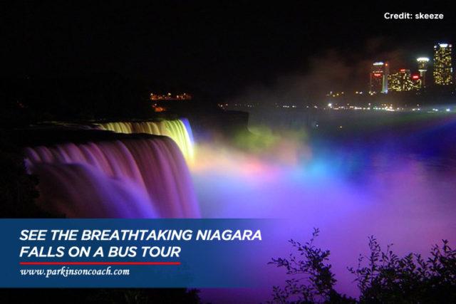 breath taking niagra falls